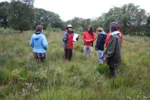 Learning to assess a habitat