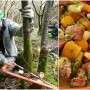 coppicing and cawl