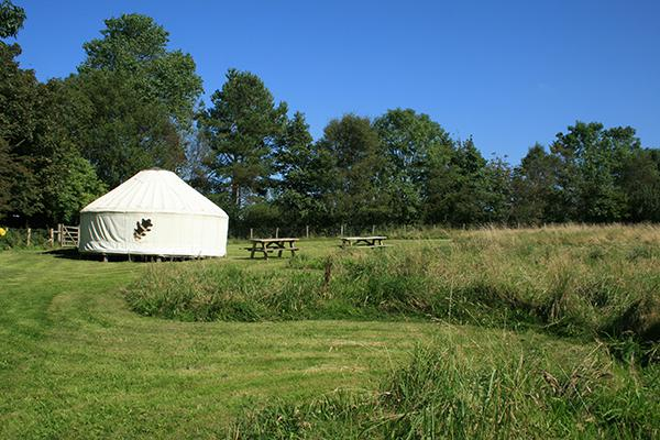 We have space for eco-camping set in a wonderful, wildlife-rich 40-acre nature reserve